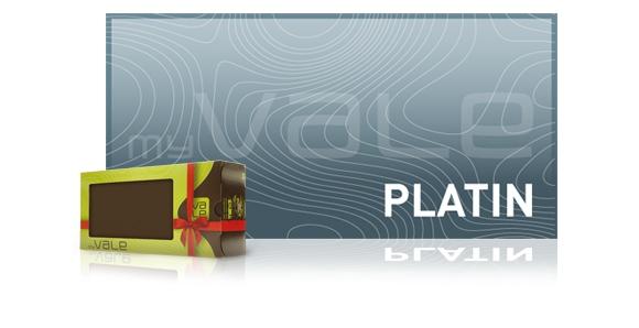 Geschenkbox Platin